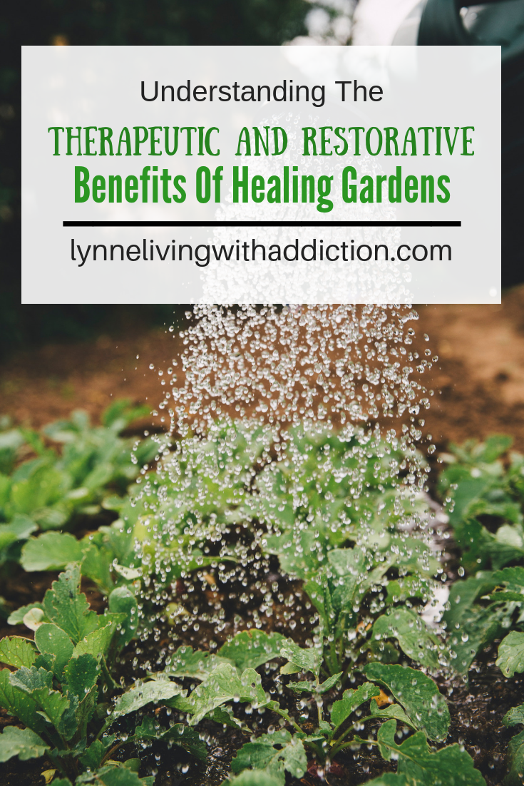 Understanding The Therapeutic and Restorative Benefits Of Healing Gardens